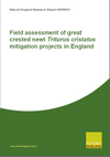 Field assessment of great crested newt Triturus critatus mitigation projects in England (Thumbnail link to record)
