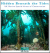 Hidden Beneath the Tides – UK Marine Special Areas of Conservation (Thumbnail link to record)