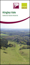 Kingley Vale National Nature Reserve - Visitor Leaflet (Thumbnail link to record)