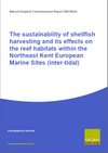 The sustainability of shellfish harvesting and its effects on the reef habitats within the north east Kent European marine sites (inter-tidal) (Thumbnail link to record)