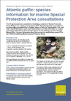 Atlantic puffin: species information for marine Special Protection Area consultations (Thumbnail link to record)