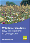 Wildflower meadows: how to create one in your garden (Thumbnail link to record)