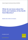 What do we know about the birds and habitats of the North Kent Marshes?: Baseline data collation and analysis (Thumbnail link to record)