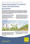 Illustrated guide to lowland chalk and limestone grassland (Thumbnail link to record)