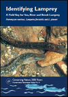 Identifying Lamprey: A Field Key for Sea, River and Brook Lamprey (Thumbnail link to record)