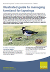 Illustrated guide to managing farmland for lapwings (Thumbnail link to record)