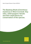 The Basking Shark (Cetorhinus maximus) in West Cornwall: Key sites, anthropogenic threats and their implications for conservation of the species (Thumbnail link to record)