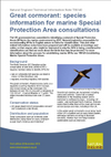 Great cormorant: species information for marine Special Protection Area consultations (Thumbnail link to record)
