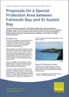 Proposals for a Special Protection Area between Falmouth Bay and St Austell Bay (Thumbnail link to record)