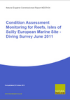 Condition Assessment Monitoring for Reefs, Isles of Scilly European Marine Site - Diving Survey June 2011 (Thumbnail link to record)