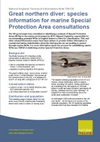 Great northern diver: species information for marine Special Protection Area consultations (Thumbnail link to record)