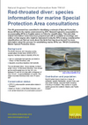 Red-throated diver: species information for marine Special Protection Area consultations (Thumbnail link to record)