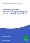 Monitoring grey seal Halichoerus grypus pupping sites in Cornwall 2019-2020 (Thumbnail link to record)