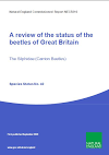 A review of the status of the beetles of Great Britain: The Silphidae (Carrion Beetles) (Thumbnail link to record)