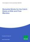 Remedial Works for the Catch Dykes at Ebb and Flow Marshes (Thumbnail link to record)