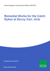 Remedial Works for the Catch Dykes at Decoy Carr, Acle (Thumbnail link to record)