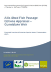Allis Shad Fish Passage Options Appraisal – Gunnislake Weir (Thumbnail link to record)