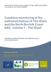Condition monitoring of the saltmarsh feature of The Wash and the North Norfolk Coast SAC: Volume 1 - The Wash (Thumbnail link to record)