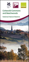 Cotswold Commons and Beechwoods National Nature Reserve leaflet (Thumbnail link to record)