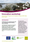 Improvement Programme for England's Natura 2000 Sites (IPENS) Innovation Workshop (Thumbnail link to record)