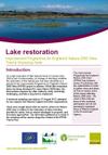 Improvement Programme for England's Natura 2000 Sites (IPENS): Lake restoration workshop notes (Thumbnail link to record)