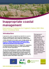 Improvement Programme for England's Natura 2000 Sites (IPENS): Inappropriate coastal management workshop notes (Thumbnail link to record)
