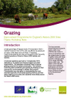 Improvement Programme for England's Natura 2000 Sites (IPENS): Grazing Workshop Notes (Thumbnail link to record)