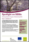 Spotlight on SSSIs - Working towards the goals of Biodiversity 2020: Issue 3 – December 2013 (Thumbnail link to record)