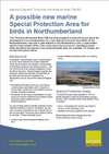 A possible new marine Special Protection Area for birds in Northumberland (Thumbnail link to record)