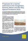 Proposals for a marine extension to the Dungeness, Romney Marsh and Rye Bay Special Protection Area (Thumbnail link to record)