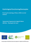 Hydrological functioning theme plan (Thumbnail link to record)