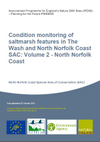 Condition monitoring of saltmarsh features in The Wash and North Norfolk Coast SAC: Volume 2 - North Norfolk Coast (Thumbnail link to record)