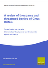A review of the scarce and threatened beetles of Great Britain: The leaf beetles and their allies (Thumbnail link to record)