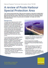 A review of Poole Harbour Special Protection Area (Thumbnail link to record)