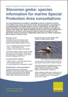 Slavonian grebe: species information for marine Special Protection Area consultations (Thumbnail link to record)