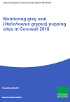 Monitoring grey seal (Halichoerus grypus) pupping sites in Cornwall 2016 (Thumbnail link to record)