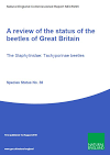 A review of the status of the beetles of Great Britain The Staphylinidae: Tachyporinae beetles (Thumbnail link to record)