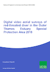 Digital video aerial surveys of red-throated diver in the Outer Thames Estuary Special Protection Area 2018 (Thumbnail link to record)