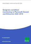 Seagrass condition monitoring in Plymouth Sound and Estuaries SAC 2018 (Thumbnail link to record)