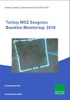 Torbay MCZ Seagrass Baseline Monitoring: 2019 (Thumbnail link to record)