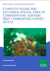 Plymouth Sound and Estuaries SAC: subtidal reef communities survey 2017/18 (Thumbnail link to record)