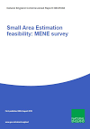 Small Area Estimation feasibility: MENE survey (Thumbnail link to record)