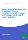 Assessment of displacement impacts of offshore windfarms and other human activities on red-throated divers and alcids (Thumbnail link to record)