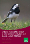 Evidence review of the impact of solar farms on birds, bats and general ecology 2016 (Thumbnail link to record)