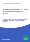 A review of the status of larger Brachycera flies of Great Britain (Thumbnail link to record)